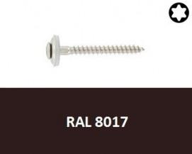 Klempířské vruty Nerez A2 RAL 8017