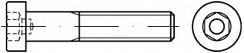 Pevnostní imbusové šrouby s nízkou hlavou DIN 6912 Ocel 10.9 Bez povrchové úpravy