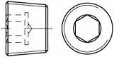 Vypouštěcí šrouby DIN 906 Ocel Zinek bílý