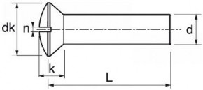 Šrouby s čočkovou hlavou DIN 964 Ocel Zinek bílý