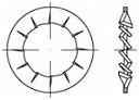 Vějířové podložky DIN 6798I Ocel Zinek bílý